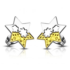 Stainless Steel 2-tone Cut-out Flower Star Stud Earrings (pair)